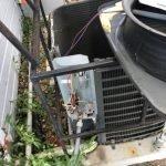 Condenser fan motor Condenser fan motor replacement Tampa AC capacitor AC installation Air conditioner fan motors